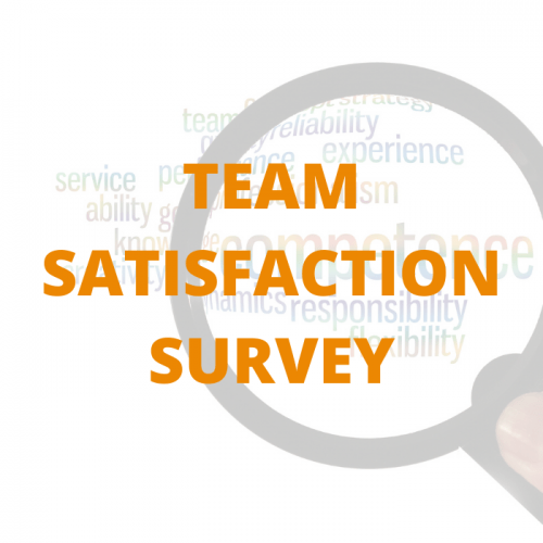 TEAM SATISFACTION SURVEY